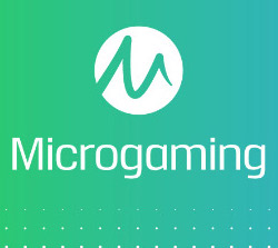 Micorgaming Slot Software