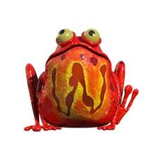 Wild Burping Frog!