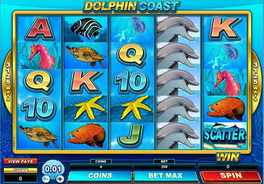 Dolphin Coast Slot Review