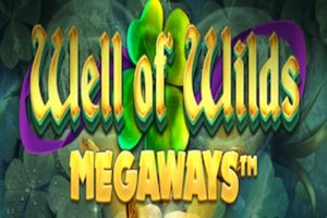 Well of Wilds logo